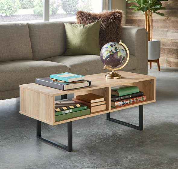 Storage Furniture_Coffee Table