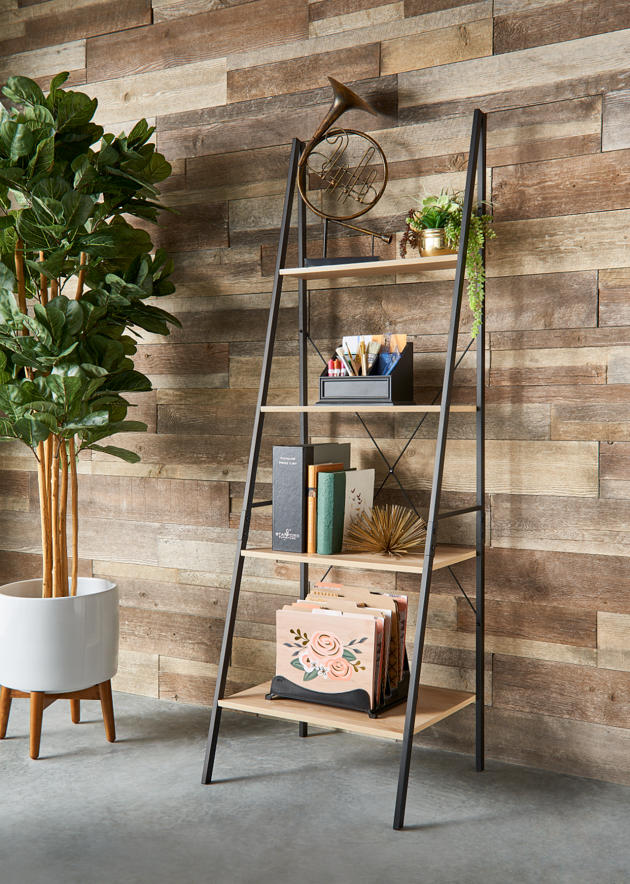 Storage Furniture_Ladder Bookshelf