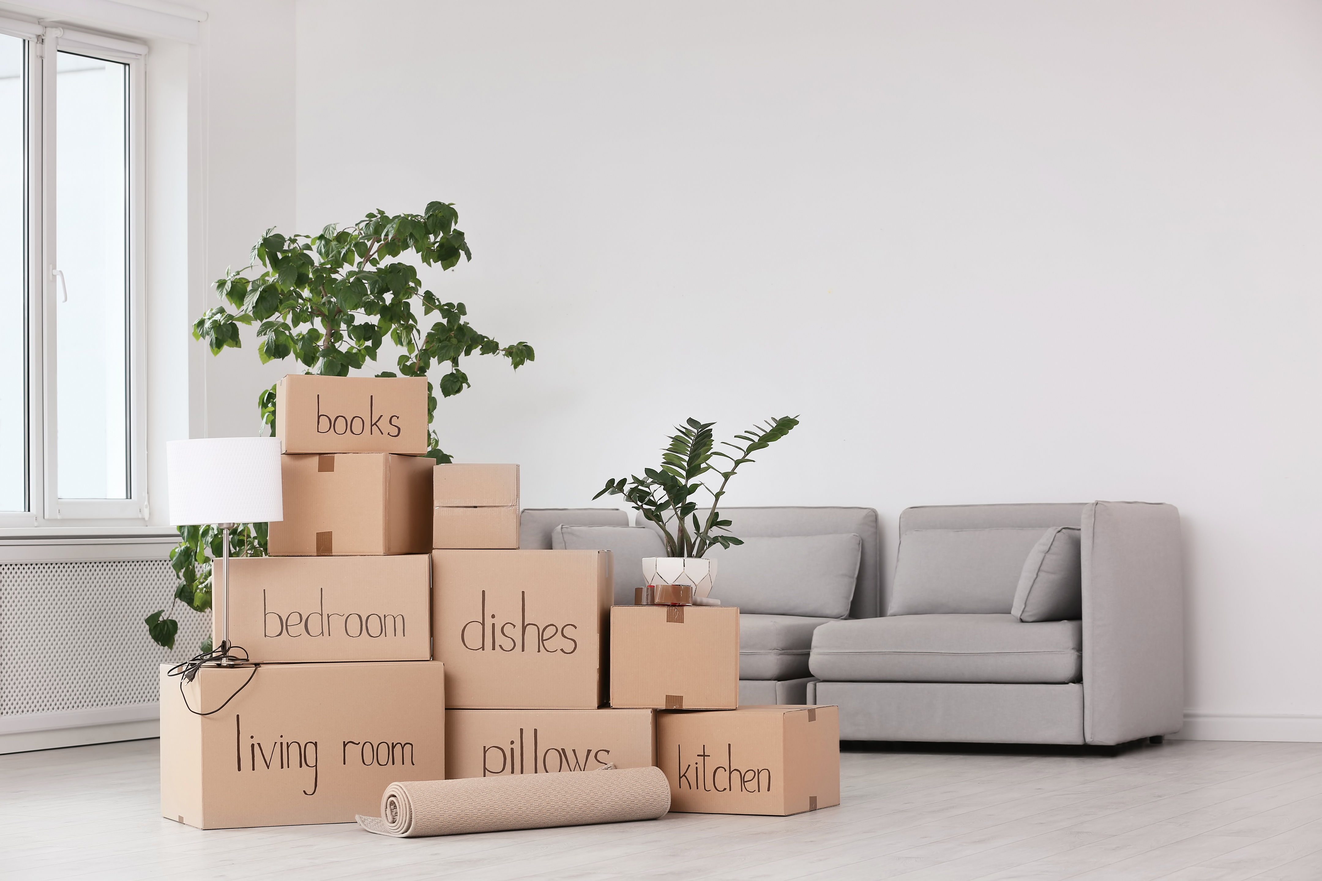 Keeping Everything from Your Possessions to Your Finances Organized as You Move